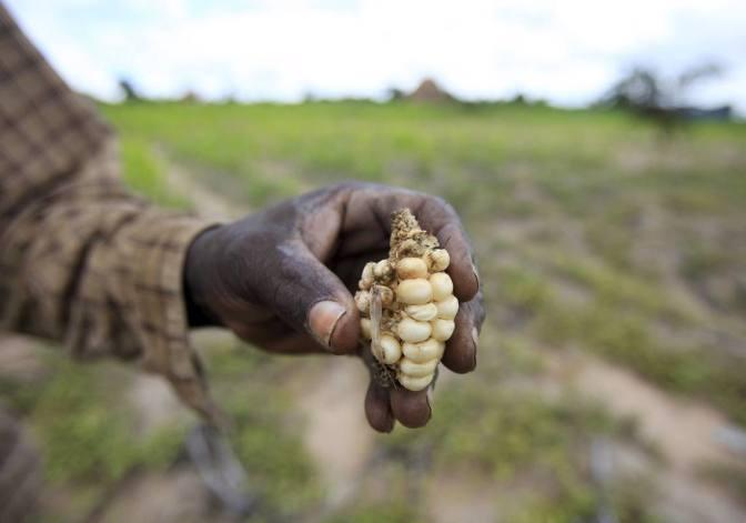 El hambre aumenta en el Pacífico y en el Caribe por los efectos de El Niño